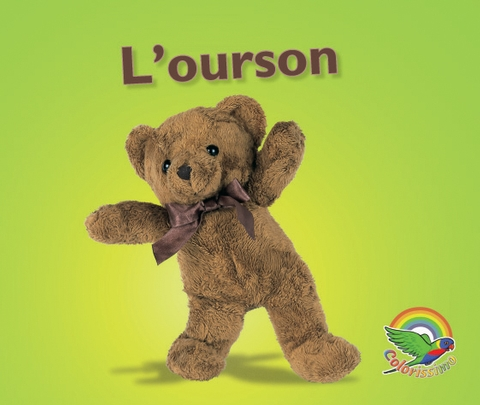 Colorissimo Magenta - L'ourson (grand livre)