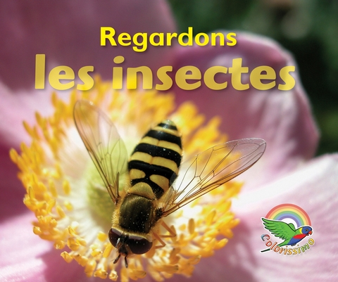 Colorissimo Rouge - Regardons les insectes (grand livre)